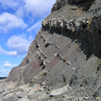 Fossil Cliffs of Joggins