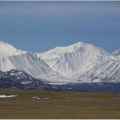 Egryul Altai Trading)